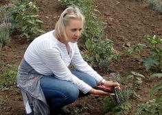 11/07/2018 Výlet: LEVANDULOVÁ FARMA VE STAROVIČKÁCH